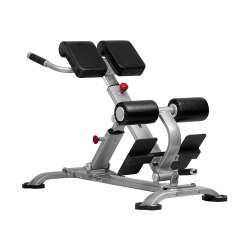 HYPEREXTENSIONS BENCH EB09 - BODYTONE